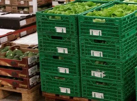 IFCO istituisce il Certificato di Sostenibilità per i retailer