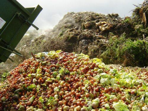 Le iniziative di Carrefour Italia contro lo spreco alimentare